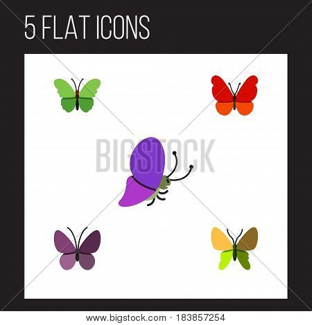 Flat Monarch Set Of Beauty Fly, Violet Wing, Milkweed And Other Vector Objects. Also Includes Moth, Milkweed, Butterfly Elements.