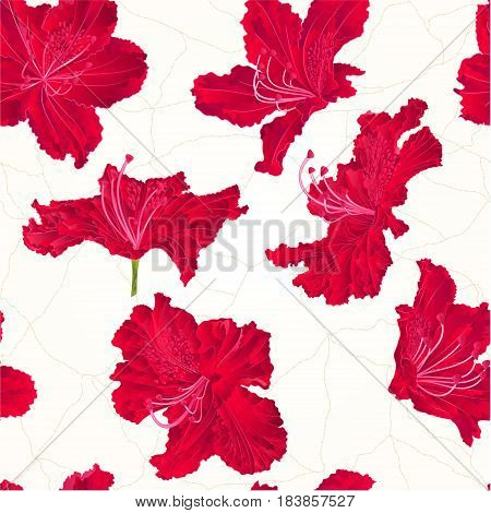 Seamless texture rhododendron red flower Mountain shrub cracks vector illustration