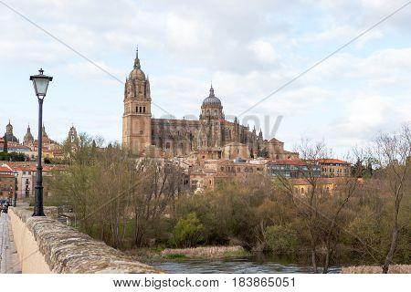 New Cathedral of Salamanca and Roman bridge, Spain