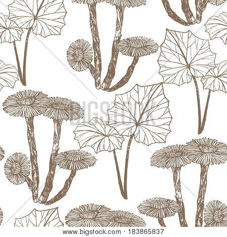 vector hand drawn seamless background with coltsfoot