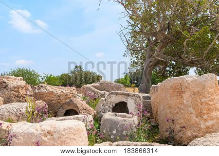 Archeological ruins ancient buildings in Beit Guvrin national Park Israel.