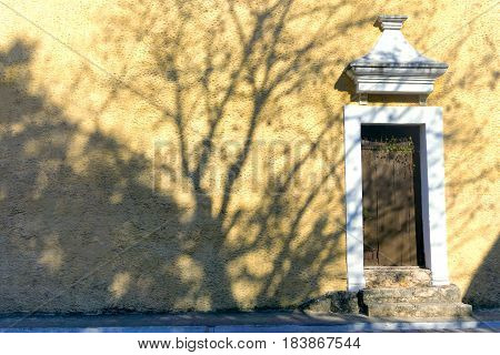 Tree casting a shadow over a colonial building in Valladolid Mexico