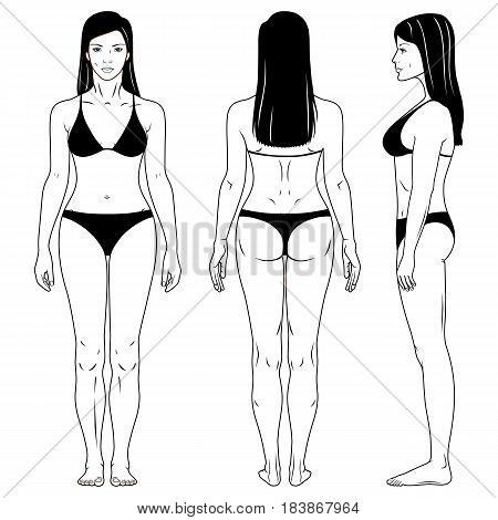 Full length front and back view of a standing naked woman outlined in two piece swimsuit isolated on white background. Vector illustration. You can use this image for fashion design and etc.