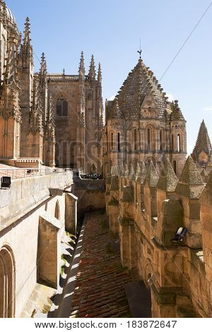 Old Cathedral of Salamanca rooftop spires etc, Spain