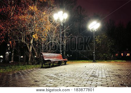 Autumn night park. Night autumn landscape of night autumn park. Autumn night with wooden bench under red autumn trees-night landscape. Night city view of autumn park. Colorful autumn night landscape