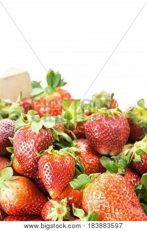 Red Ripe Strawberries, On White Background With Copy-space.