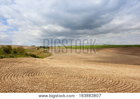 Chalky Cultivated Fields