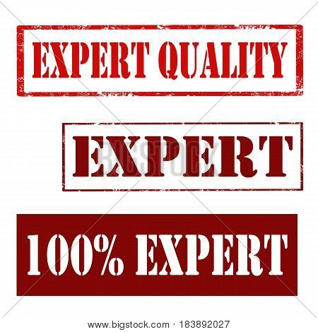 Set of stamps with text Expert,Expert Quality and 100% Expert,vector illustration