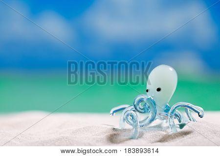glass tropical sea  octopus on white  beach sand under the sun light, shallow dof
