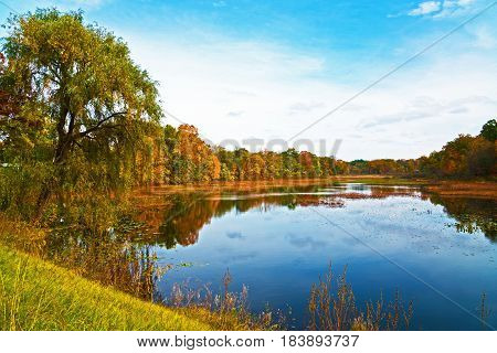 An exquisitely colorful autumn scene reflected from a lake near Paw Paw Michigan.