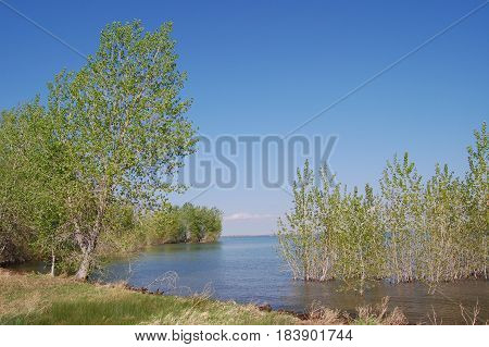 Scenic Front Range Colorado lake landscape with blue sky