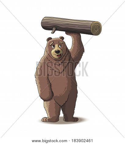 Brown bear carry wood from the forest