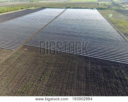 Rows Of Filmy Greenhouses In The Field. Growing Vegetables In A Closed Ground. Greenhouses In The Fi