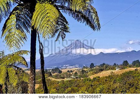 Mt Egmont,also known as Mt Taranaki viewed from New Plymouth and framed by tree fern