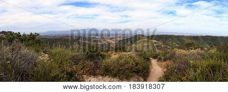 Aliso and Wood Canyons Wilderness Park hiking paths in Laguna Beach California in spring