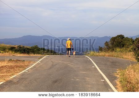 Dog walker on a road that heads through the wilderness with mountains in the distance.