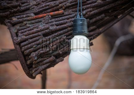 White Light Bulb close up shot hanging in garden