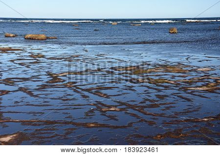 Low tide at Long Reef Headland (Sydney NSW Australia)