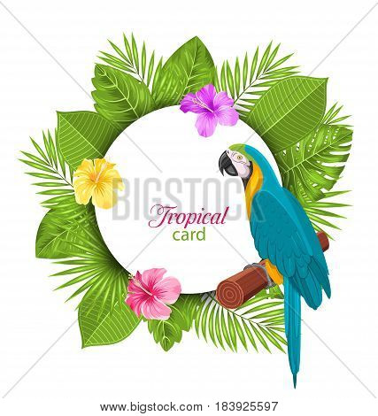 Illustration Tropical Card with Parrot Ara, Colorful Hibiscus Flowers Blossom and Exotic Leaves - Vector