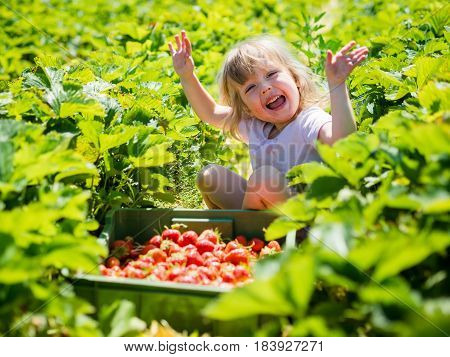 Joyful girl child sitting with a basket full of strawberries in orchard