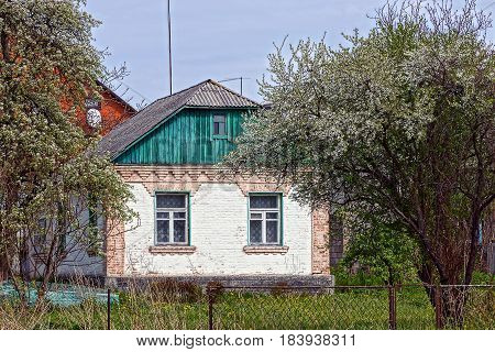 Old rural house in a blooming garden