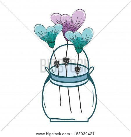 botany flowers with petals in the jar decoration, vector illustration