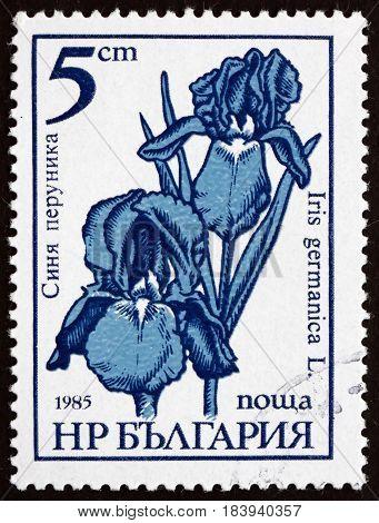 BULGARIA - CIRCA 1985: a stamp printed in Bulgaria shows German Iris Iris Germanica Flower circa 1985