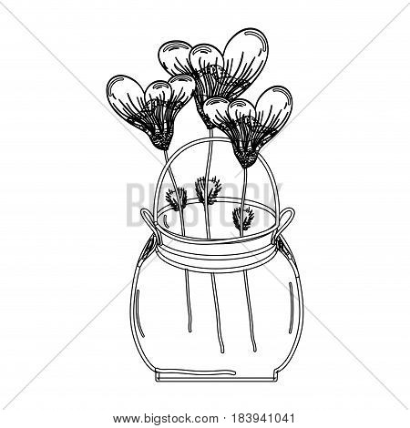 contour botany flowers with petals in the jar decoration, vector illustration