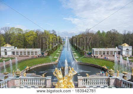 PETERHOF RUSSIA - MAY 10 2015: Iconic view from Peterhof Palace to canal and fountains St. Petersburg Russia.
