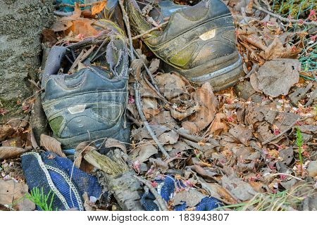 Discarded sports shoes surrounded by leaves and debris in woodland area in South Korea