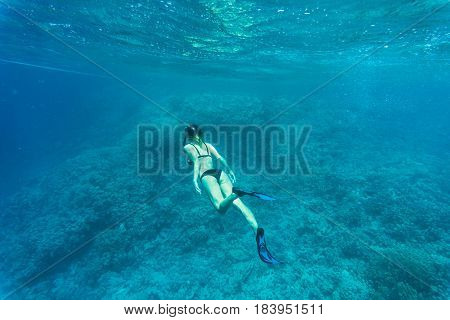 Beautiful Coral Reef With Young Freediver Woman, Underwater Life. Copyspace For Text