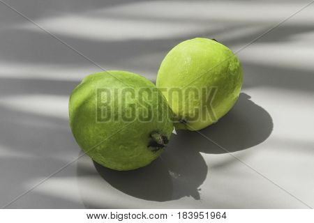 Two gren guava on background with shadow