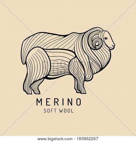 Merino sheep logo, label. Vector ram illustration. Ewe soft wool sign. Fleece icon background