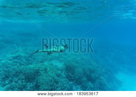 Young Lady Swimming Underwater Over Coral Reefs In A Tropical Sea
