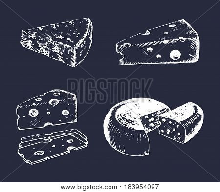 Vector cheese set. Vintage hand drawn parmesan, cheddar, edam etc illustrations on black background. Dairy products sketches.
