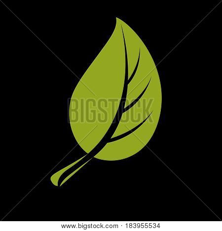 Single Vector Flat Green Leaf. Herbal And Botany Art Symbol, Spring Season Stylized Ecology Icon. En