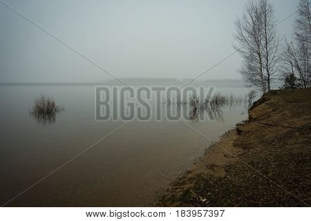 Scenic view of several trees almost inside the waters of Mozhayskoe sea flooded in spring