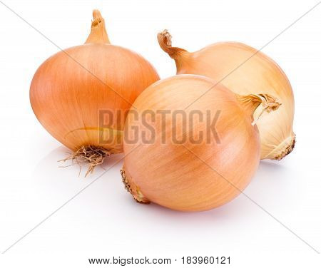 Three onion bulbs isolated on a white background