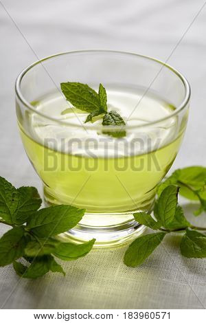 Fresh mint tea in glass cup