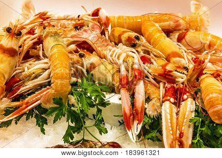 shrimps on ice seafood on the market