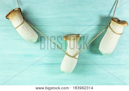 A photo of king trumpets, edible Mediterranean mushrooms, hanging on a rope on a teal background with copy space