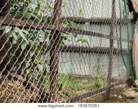 color photo of chainlink fence also referred to as wire netting wire
