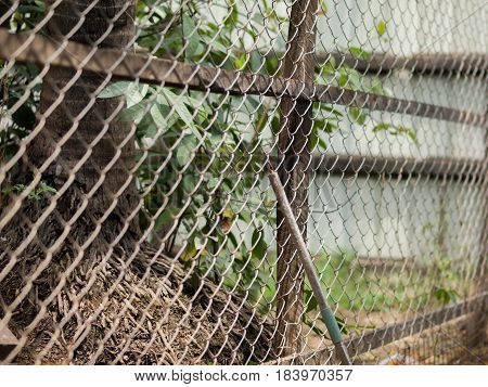 COLOR PHOTO OF CHAIN-LINK FENCE (ALSO REFERRED TO AS WIRE NETTING, WIRE-MESH FENCE, CHAIN-WIRE FENCE, CYCLONE FENCE, HURRICANE FENCE, OR DIAMOND-MESH FENCE)