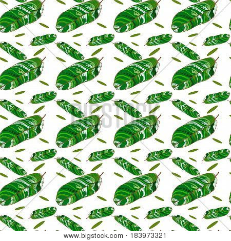 tropical leaves on white background, seamless pattern with banana leaves