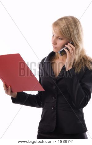 The Businesswoman With A Folder