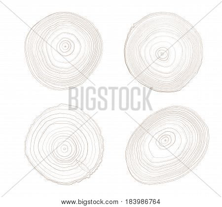 Four brown ring tree wood with the woodgrain detail