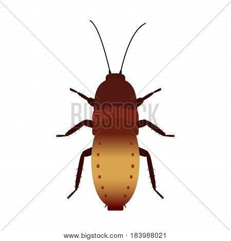 Vector illustration of a colored cockroach. Isolated on white background.