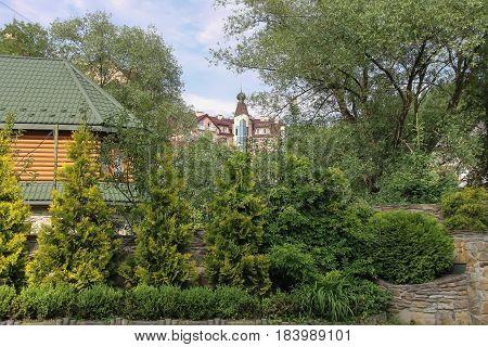 Small coniferous garden near wooden building in Ukraine