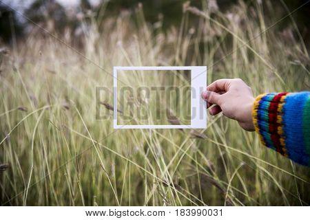 Field green grassland natural peaceful