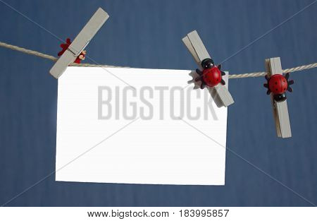 White isolated photo fixed clothespins with ladybirds on a rope